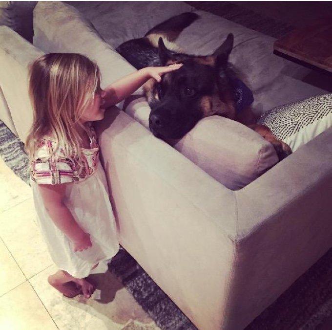 petite fille caresse un berger allemand dans un canapé