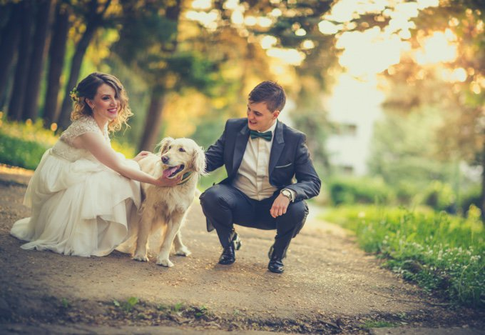 photo de mariage avec le chien