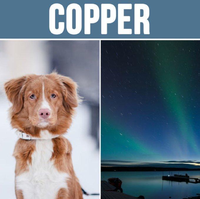 copper-05-2016