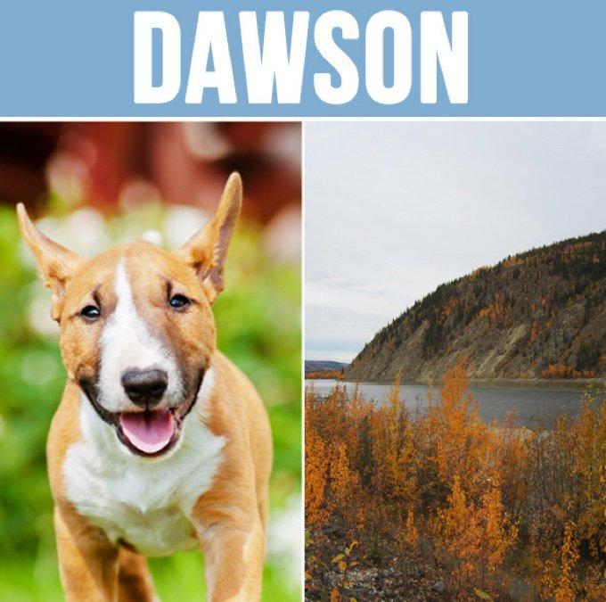 dawson-05-2016