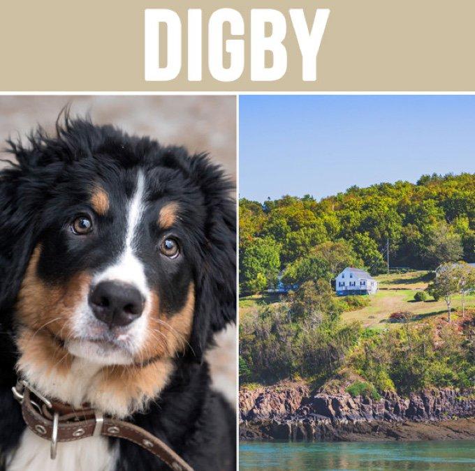 digby-05-2016