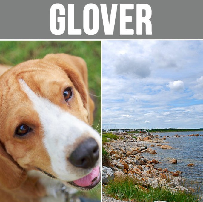 glover-05-2016