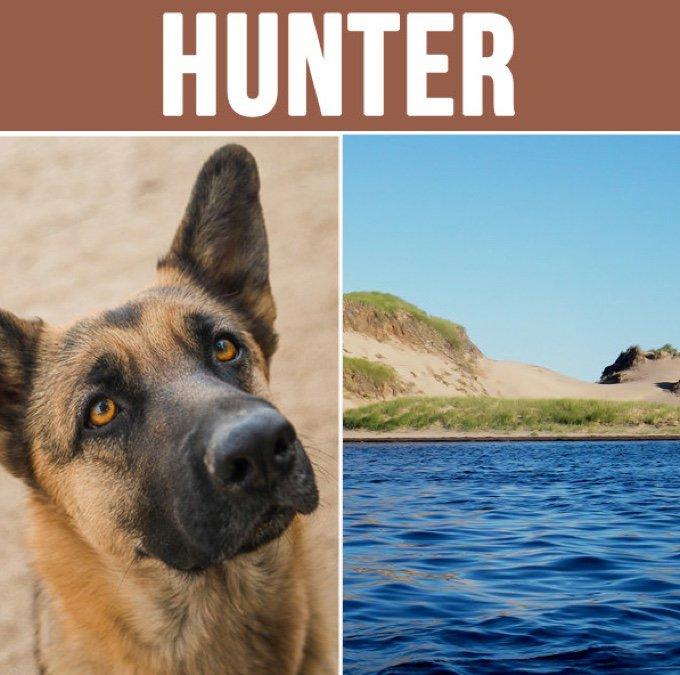 hunter-05-2016