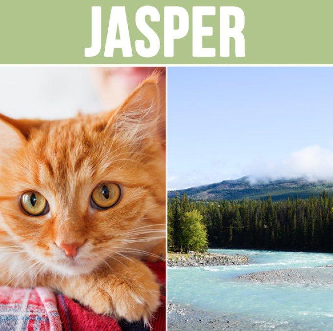 jasper-05-2016