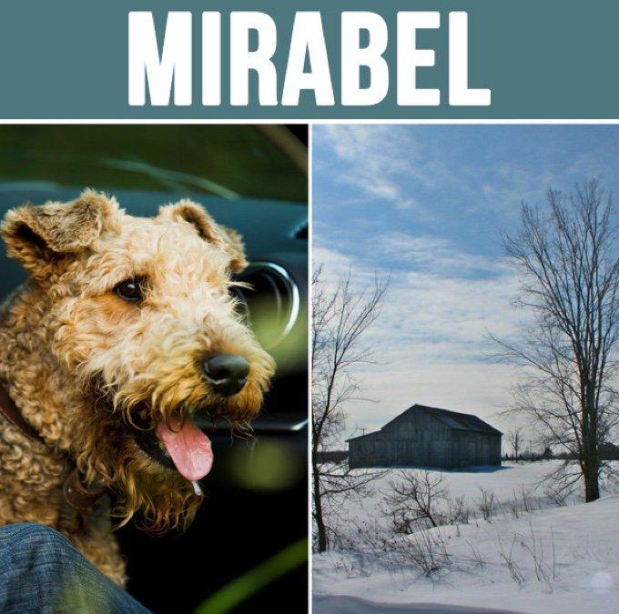 mirabel-05-2016