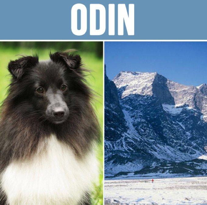 odin-05-2016