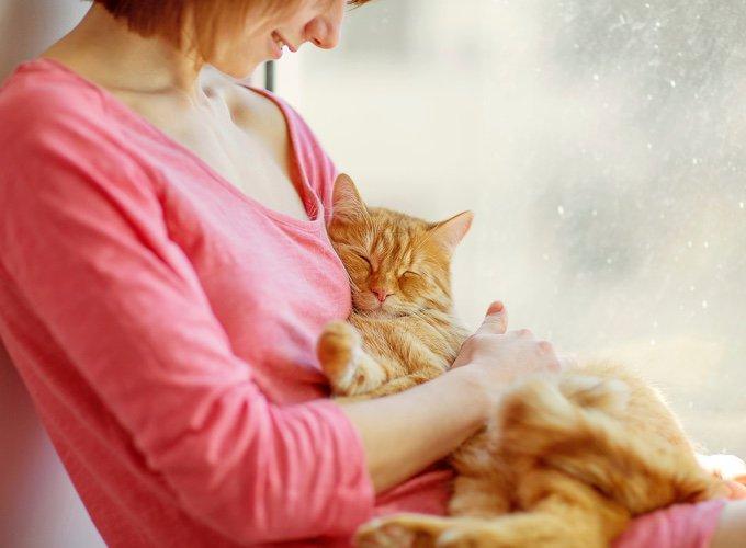 Quel type de partenaire de jeu est votre chat
