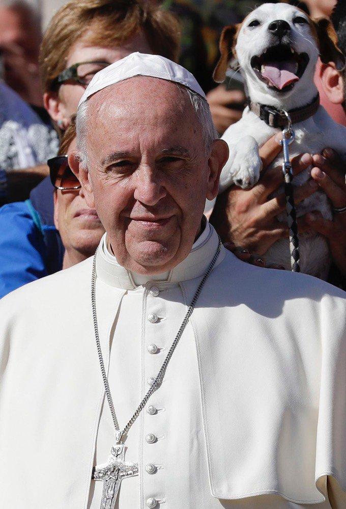 Pape François photobombé par un chien