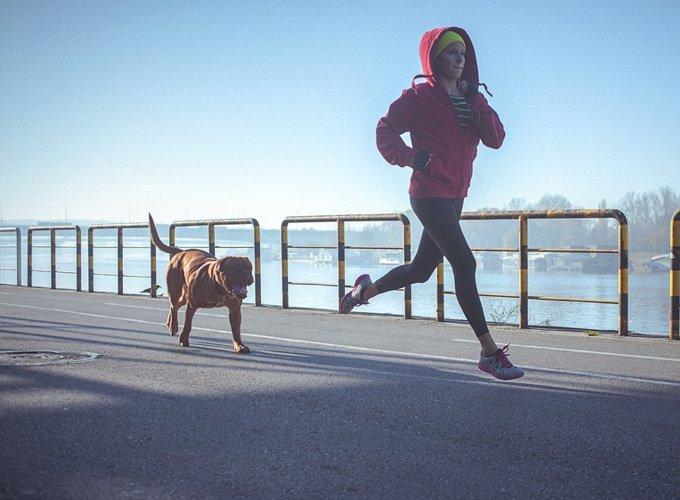haciendo deporte con perro