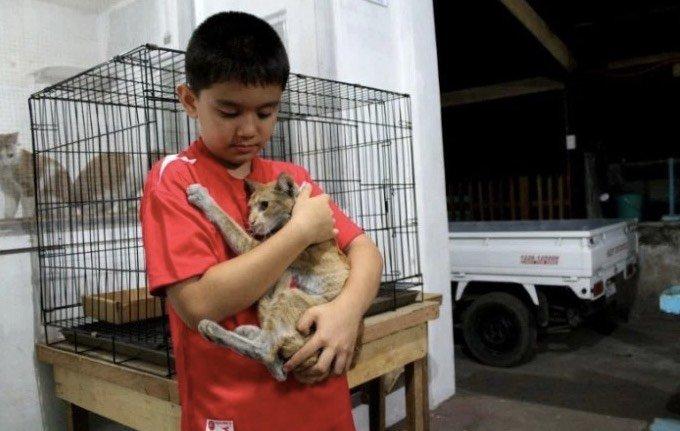 Ken, enfant gérant d'un refuge aux Philippines