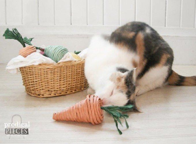 DIY chat Noël