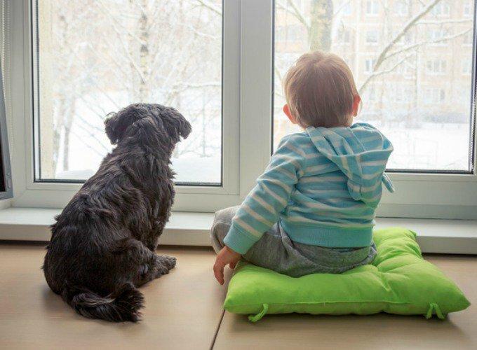les bienfaits du chien sur l'enfant
