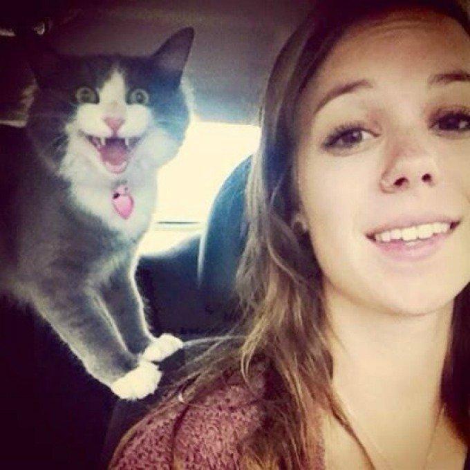 selfie chat sourire