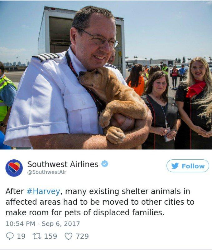 sauvetage Houston