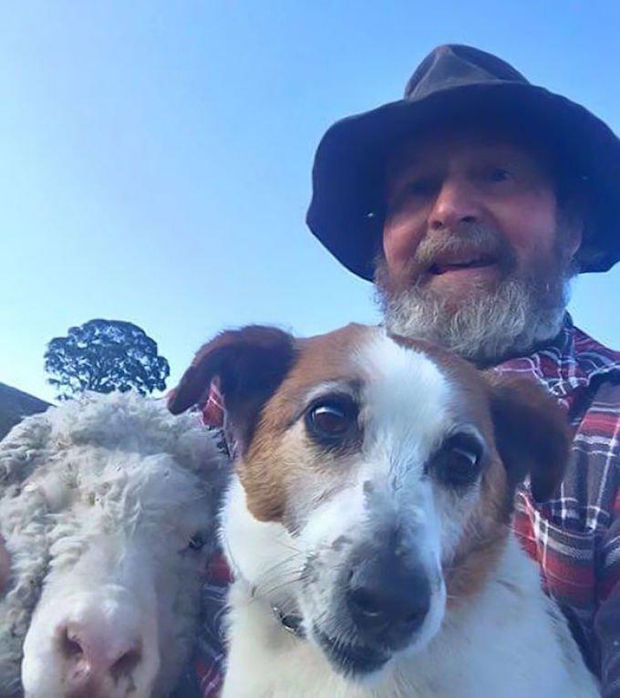 vieil homme selfies chien mouton