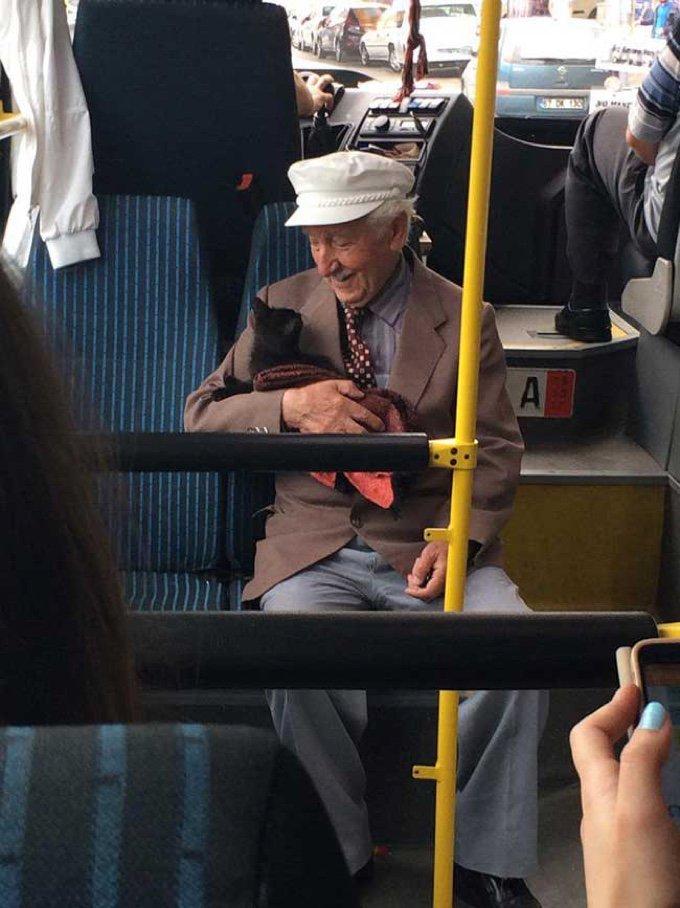 homme âgé et son chat