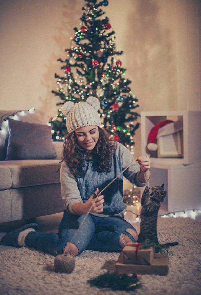 cadeau de noël pour chat