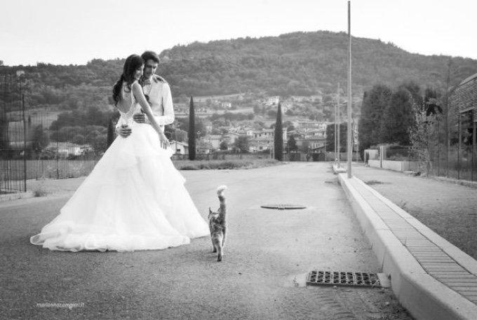 mariage chats