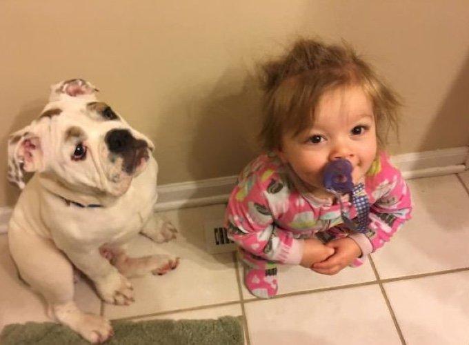 chien-enfant