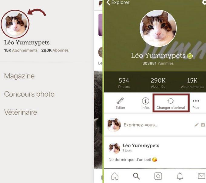Changer de profil d'animal sur l'application Yummypets iOS