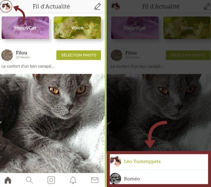 Changer de profil d'animaux sur l'application iOS Yummypets
