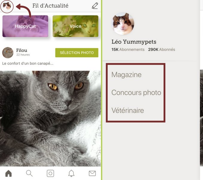 Le menu de l'application iOS Yummypets