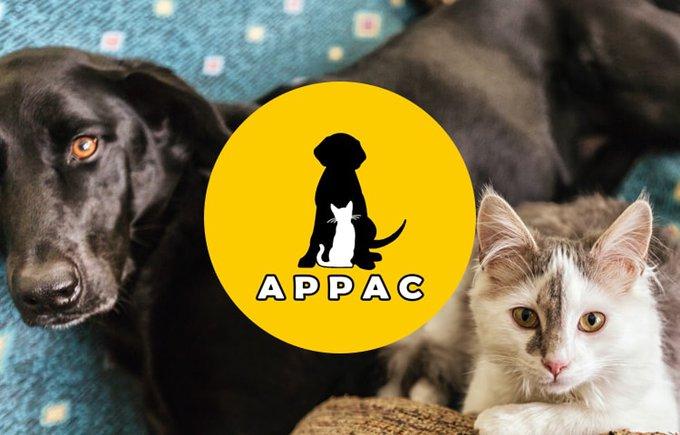 Soutenez l'association APPAC avec le programme Voice.