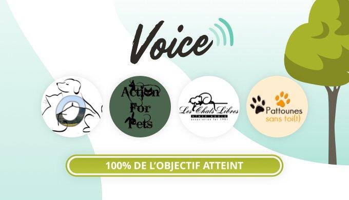 Les cagnottes terminées du programme Voice août 2020.