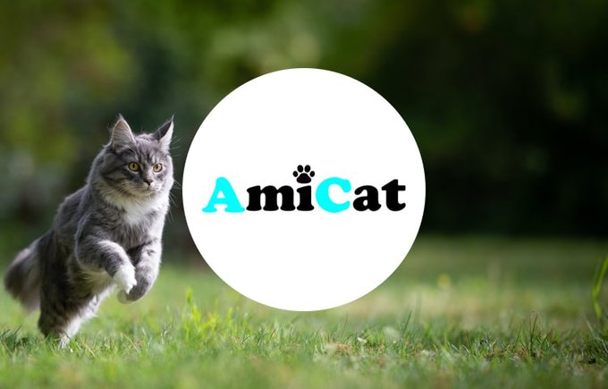 Association amicat, programme Voice Yummypets 2020.