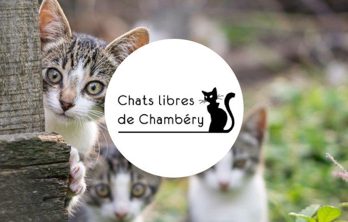 Les chats libres de Chambéry, association du programme Voice septembre 2020 Yummypets.