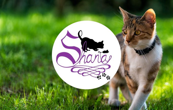 Shana, association du programme Voice septembre 2020.