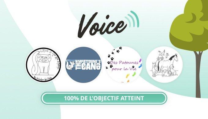 Les cagnottes Voice du mois de décembre sont terminées avec succès.