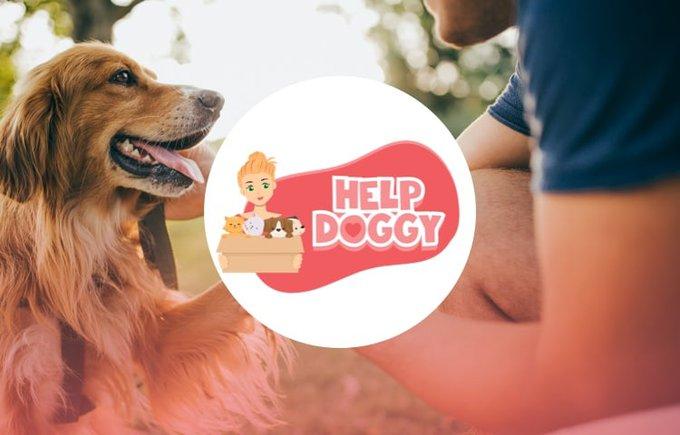 Découvrez l'association Help Doggy qui participe au programme Voice.