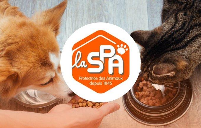 Découvrez l'association SPA Saint Omer qui participe au programme Voice.