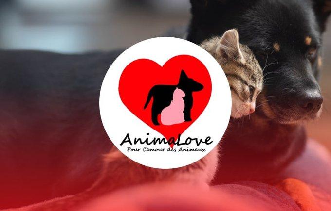 Découvrez l'association AnimaLove qui participe au programme Voice.