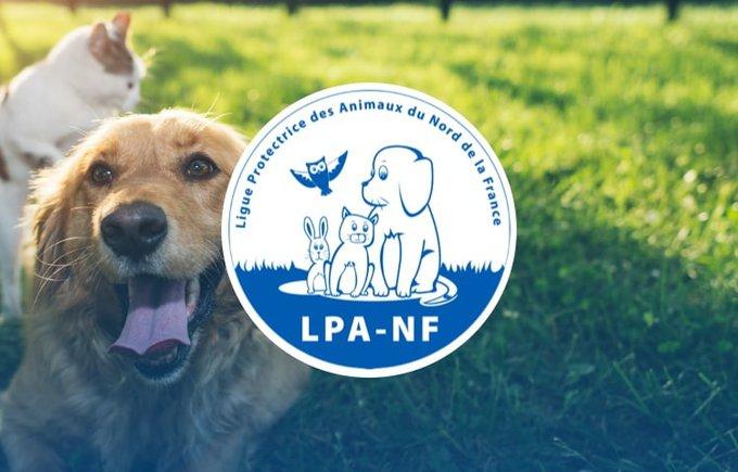 Découvrez l'association LPA NF qui participe au programme Voice.
