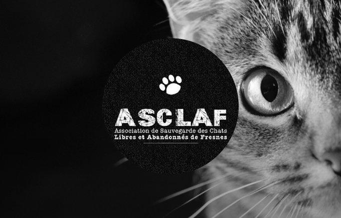 L'association ASCLAF participe au programme Voice.