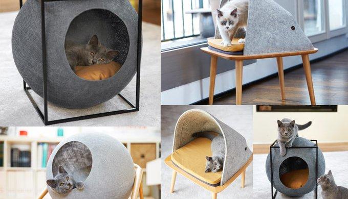 Proposer une gamme de mobilier et d\u0027accessoires pour chats design et  socialement responsables  c\u0027est le challenge lancé par une jeune  parisienne,